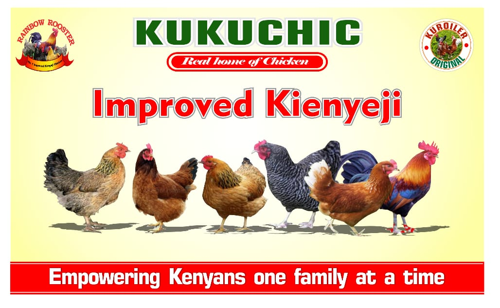 Improved Kienyeji